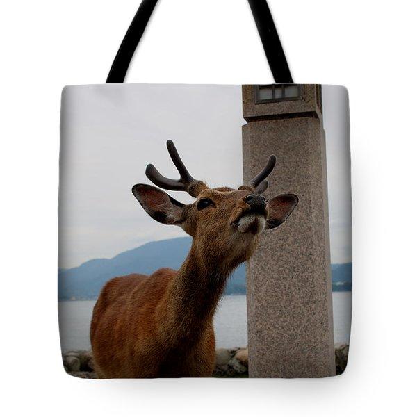 Miyajima Deer Tote Bag