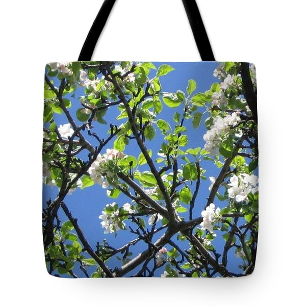 Tote Bag featuring the photograph Mn Apple Blossoms by Barbara Yearty
