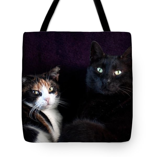 Tote Bag featuring the photograph Mochi And Stinky by Laura Melis