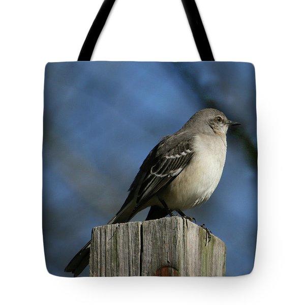 Mocking Bird Tote Bag