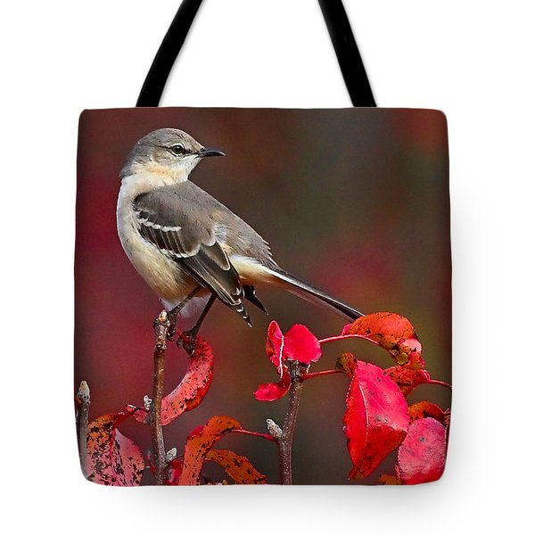 Mockingbird On Red Tote Bag