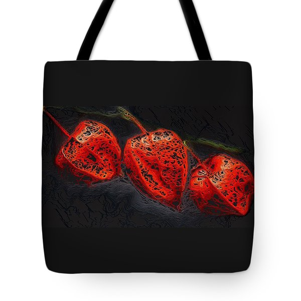 Modified Look Tote Bag