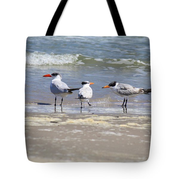 Moe And Larry And Curlie Tote Bag