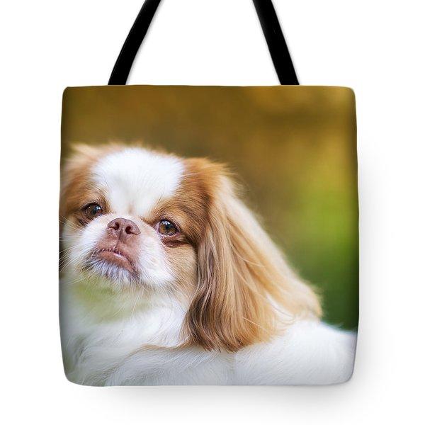 Mogai Portrait 1 Tote Bag by Ryan Manuel