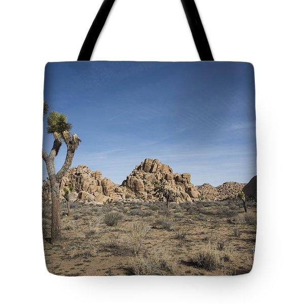 Mohave Desert Tote Bag