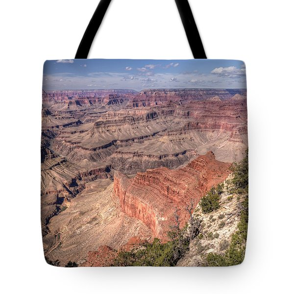 Tote Bag featuring the photograph Mohave by John Gilbert