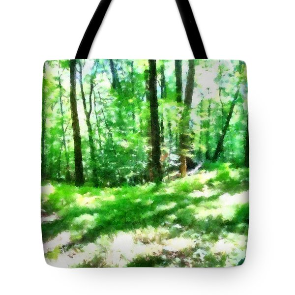 Tote Bag featuring the photograph Mohegan Lake Forever Green by Derek Gedney