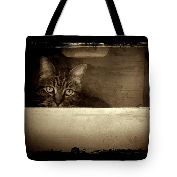 Mollie In A Box Tote Bag by Patricia Strand