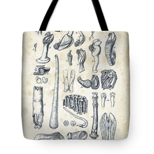 Mollusks - 1842 - 02 Tote Bag
