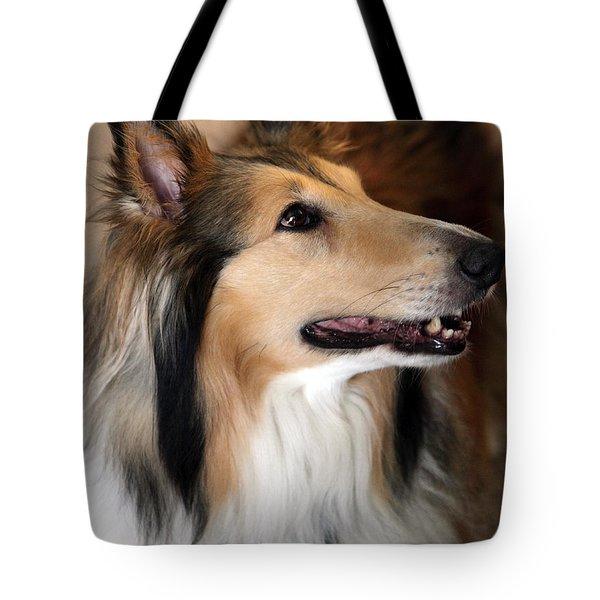 Molly Tote Bag by Amanda Barcon