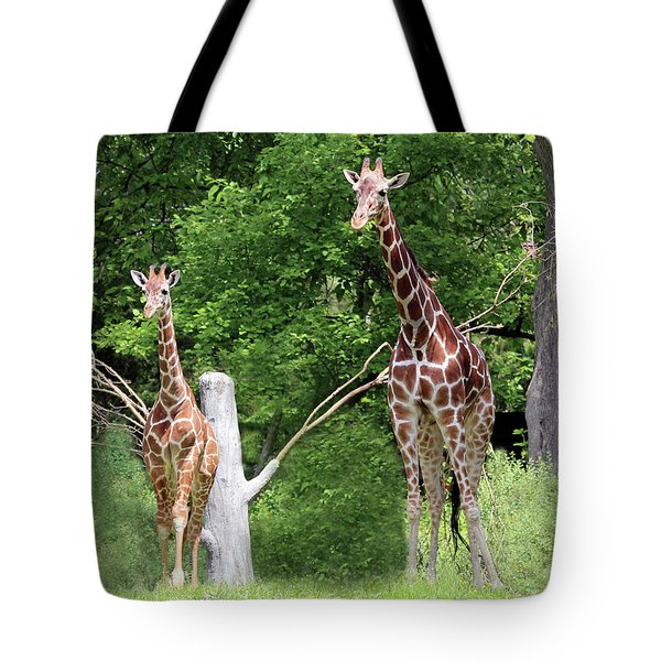 Tote Bag featuring the photograph Mom And Baby Giraffe by Jackson Pearson