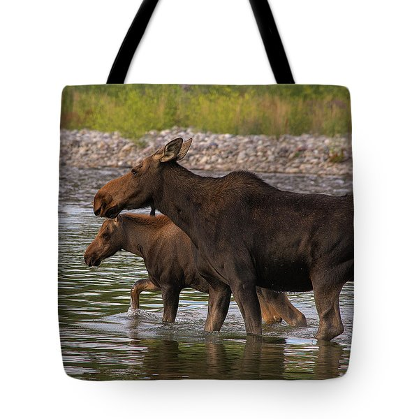Tote Bag featuring the photograph Mom And Baby Moose River Crossing by Mary Hone