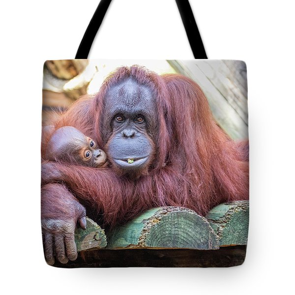 Mom And Baby Orangutan Tote Bag