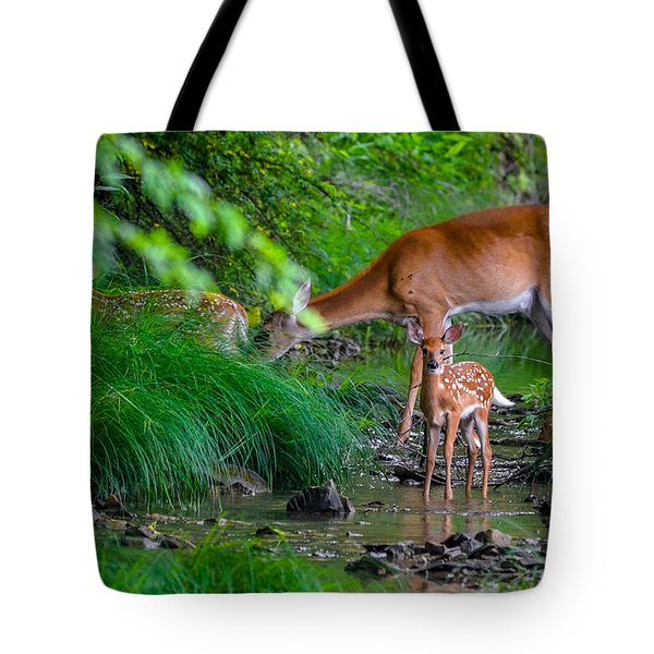 Mom And Fawns 3 Tote Bag