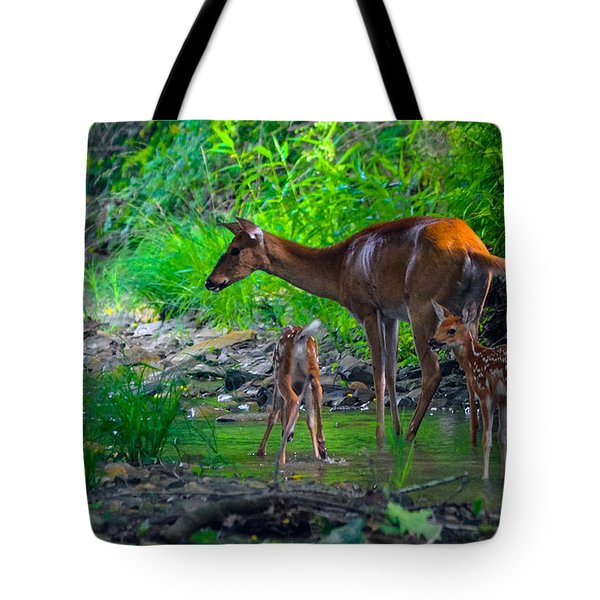 Mom And Fawns Tote Bag