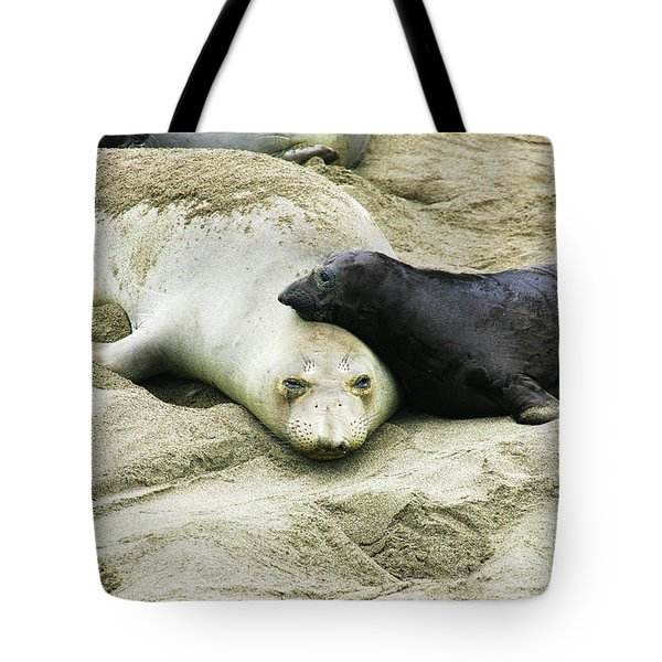Tote Bag featuring the photograph Mom And Pup by Anthony Jones