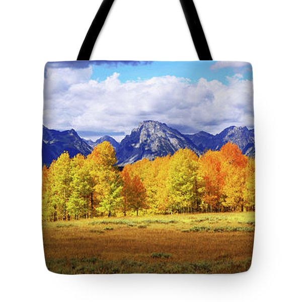 Moment Tote Bag