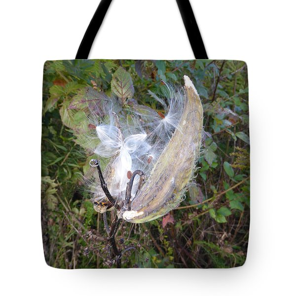 Tote Bag featuring the photograph Moment In The Life Of A Milkweed by Joel Deutsch