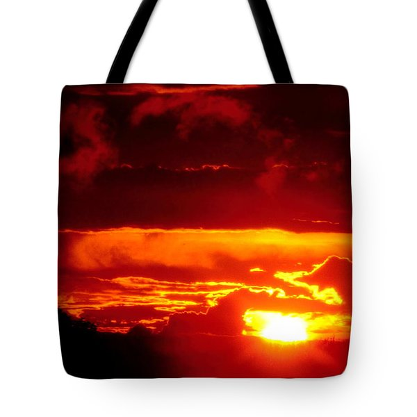 Moment Of Majesty Tote Bag by Bruce Patrick Smith