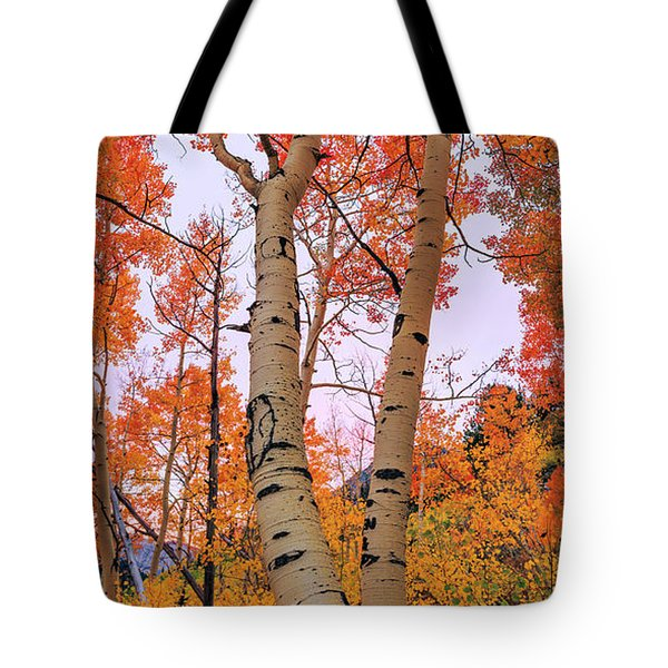 Moments Of Fall Tote Bag