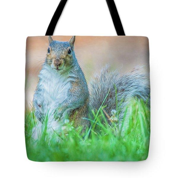 Momma Squirrel Tote Bag
