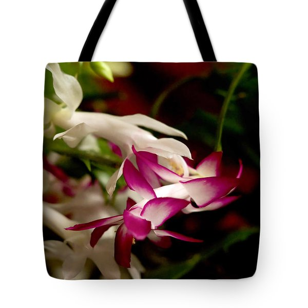 Tote Bag featuring the photograph Momma's Christmas Cactus by B Wayne Mullins