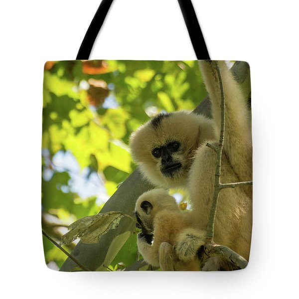 Mommy Gibbon Tote Bag
