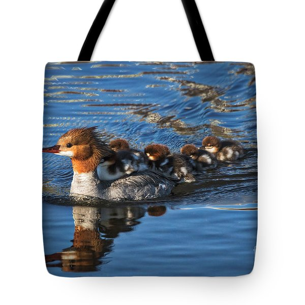Tote Bag featuring the photograph Mommy Merganser  by Mitch Shindelbower
