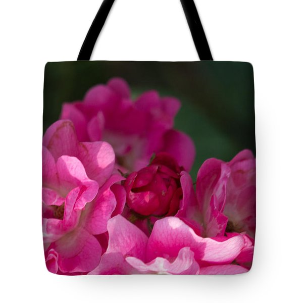 Tote Bag featuring the photograph Mom's Rose by Cathy Donohoue