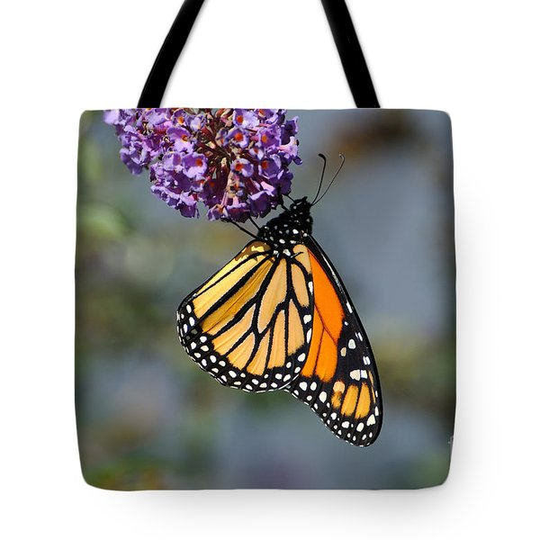Monarch 2011 F Tote Bag