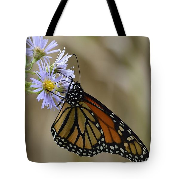 Monarch 2015 Tote Bag by Randy Bodkins