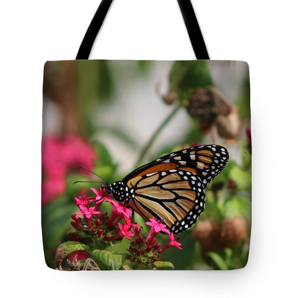 Monarch Butterfly On Fuchsia Tote Bag