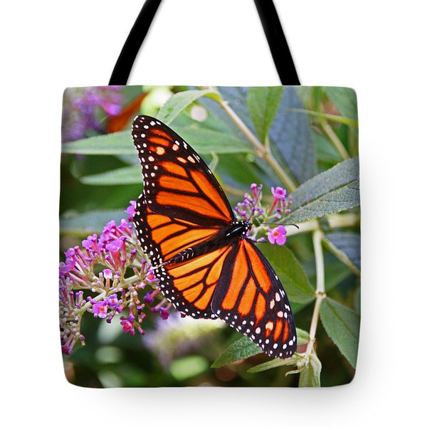 Monarch Butterfly 2 Tote Bag by Allen Beatty
