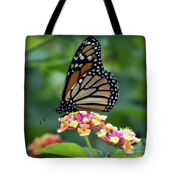 Monarch Butterfly Art II Tote Bag