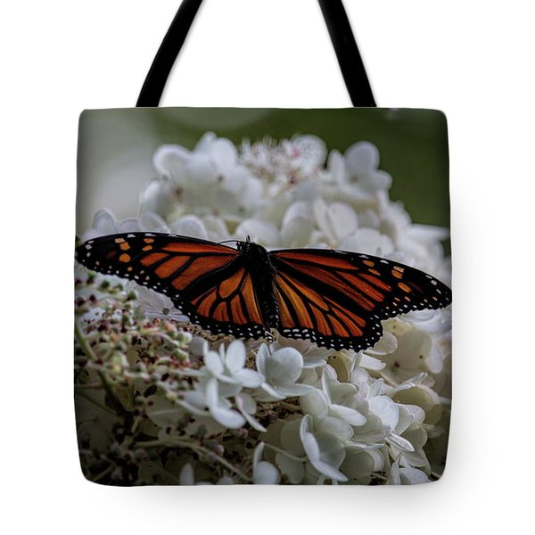 Tote Bag featuring the photograph Monarch Butterfly Feeding On Hydrangea Tree by Dale Kauzlaric