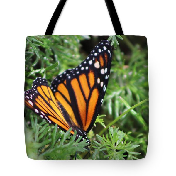 Monarch Butterfly In Lush Leaves Tote Bag