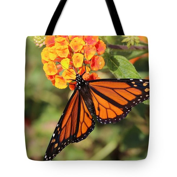 Monarch Butterfly On Orange Flower Tote Bag