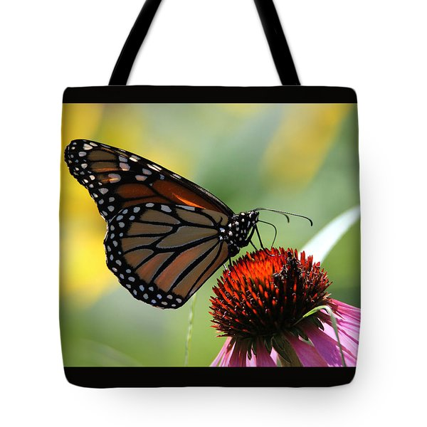 Monarch Butterfly Stony Brook New York Tote Bag