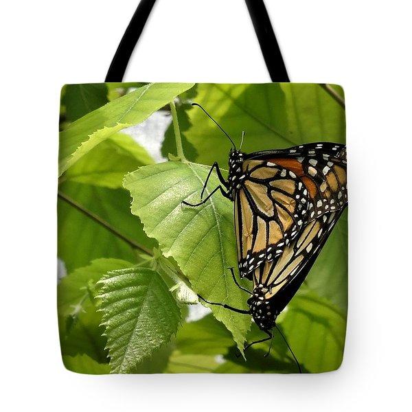 Monarch Duo Tote Bag
