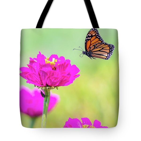 Tote Bag featuring the photograph Monarch In Flight 1 by Brian Hale