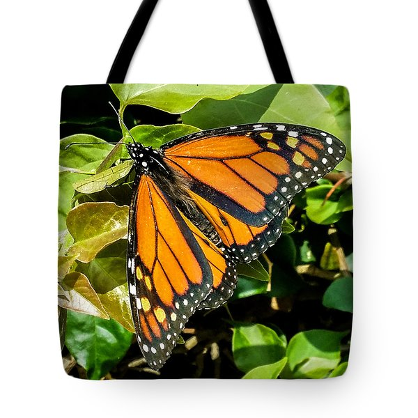 Monarch Tote Bag by Mark Barclay