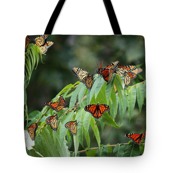 Monarch Migration Tote Bag