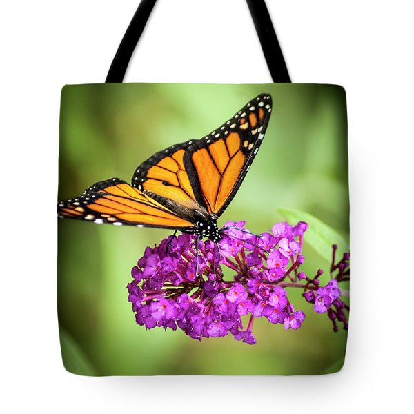 Monarch Moth On Buddleias Tote Bag