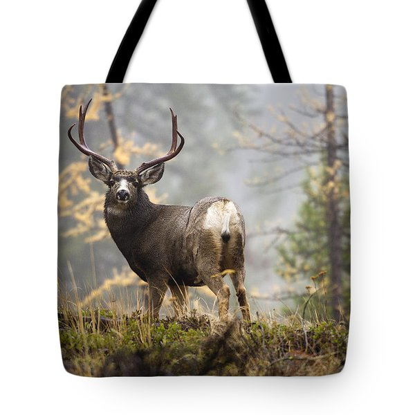 Monarch Of The Mountain Tote Bag