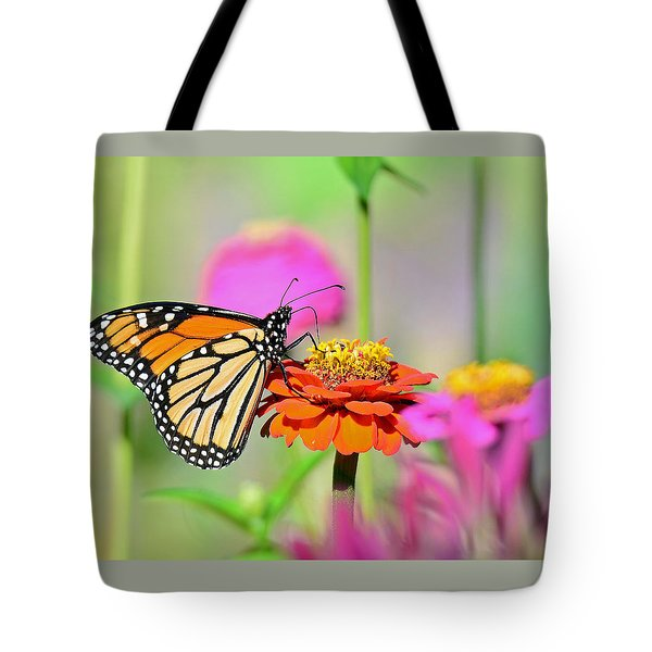 Tote Bag featuring the photograph Monarch On A Zinnia by Rodney Campbell