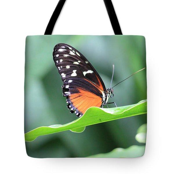 Monarch On Green Leaf Tote Bag
