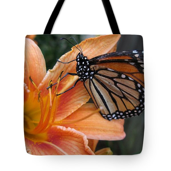 Monarch On Lily Tote Bag