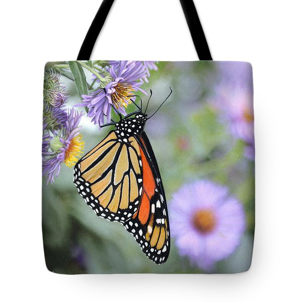 Monarch On New England Aster Tote Bag