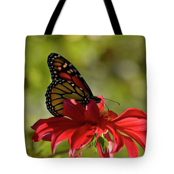 Monarch On Red Zinnia Tote Bag by Ann Bridges