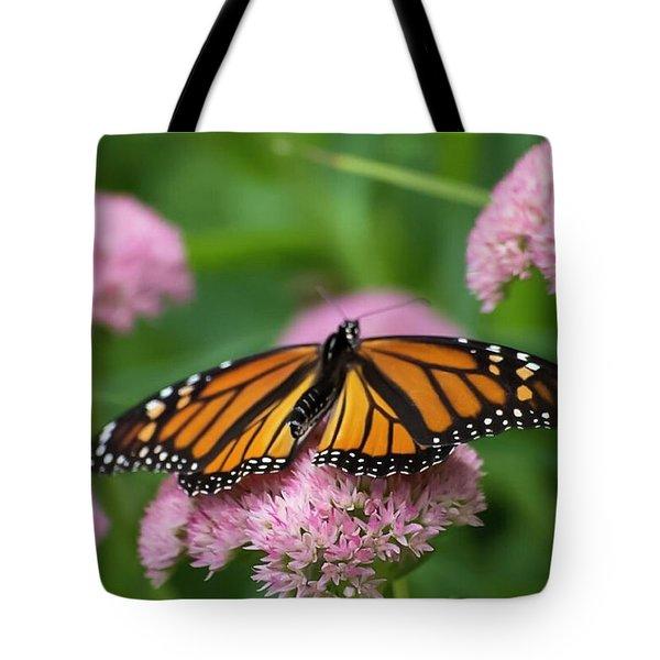 Monarch On Sedum Tote Bag